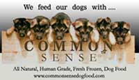 Common Sense Dog Food