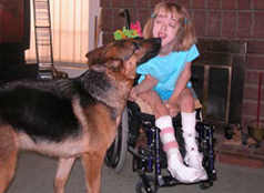 Service, Protection, Therapy, & Assistance Dogs